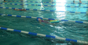 grupowe zajęcia pływanai dzieci