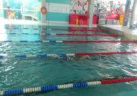 lekcja pływania dla dzieci w chełmcu