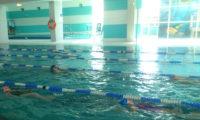 pływanie dzieci chełmiec